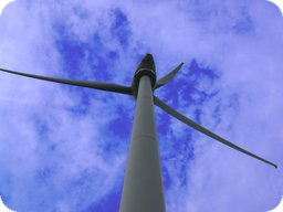 Exkursion Windpark CCAC 2011-08-21
